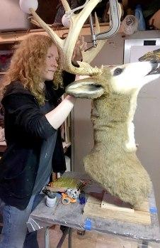 DeerWork-1650x2550