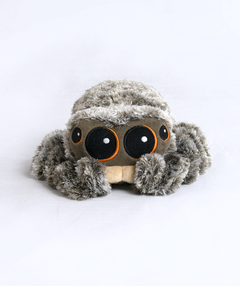 Official Lucas the Spider Plush Design